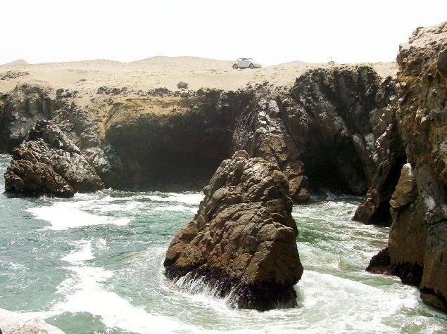 Peruvian Reef