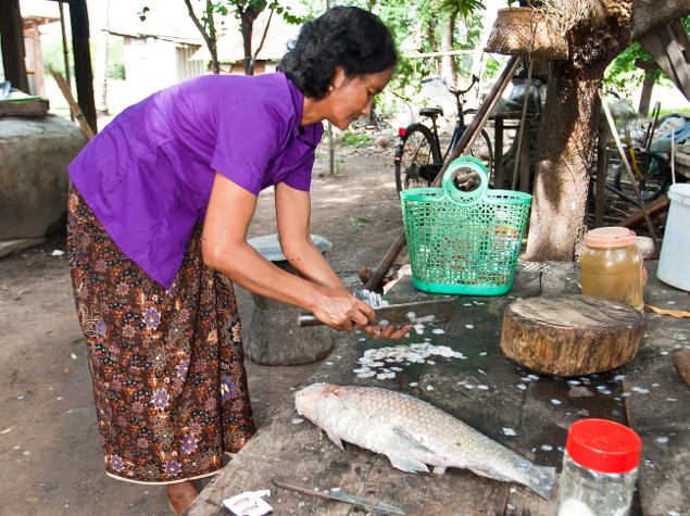 Ms. Na Meung (51 yo) preparing freshly caught fish for our lunch the day we arrived. Community visit organized through the Culture & Environment Preservation Association (CEPA) NGO. Location: Koh Sneng village, Steung Treng Province, Cambodia.