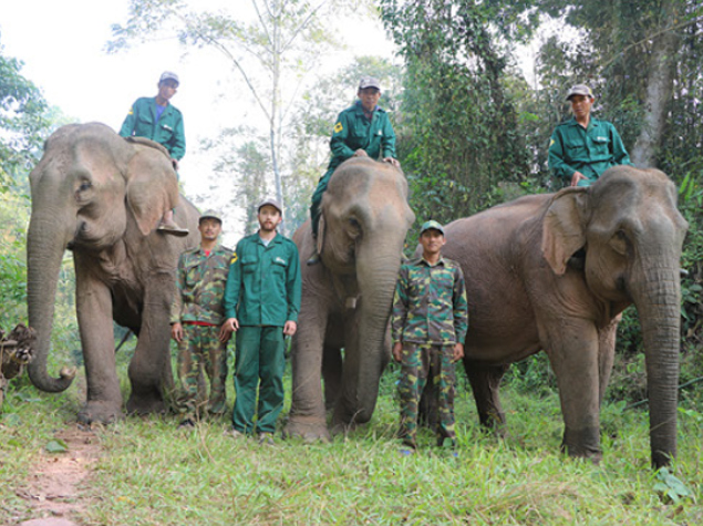 Mahout-rangers candidates